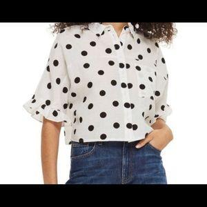Topshop Polka Dot Linen Button Down Cropped Top